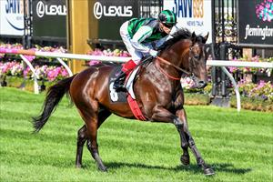 O'Brien to unveil Addictive Nature at Caulfield