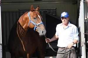 Star mares to greet Star Witness
