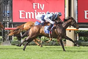 Sire Ready For A Blue Diamond Win