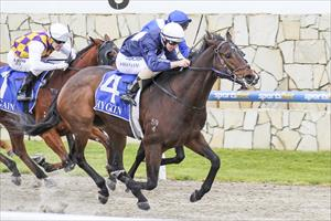 No sweat for odds on Eira