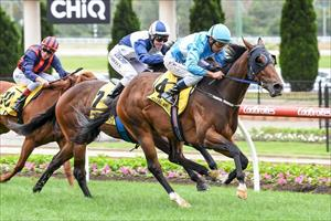 Trainer Embracing big year ahead