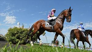 Shamexpress sizzles in jumpout