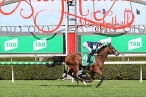 ADELAIDE CUP WIN OVERSHADOWED BY TRAGEDY
