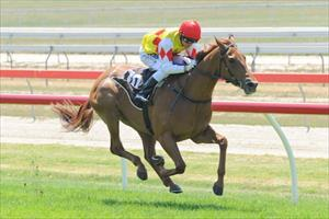 Well-bred filly has Oaks Day in her sights