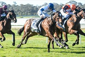 FILLY BOUNDS INTO OAKS CALCULATIONS