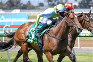 Tried & tested formula sees mare bounce back to form