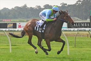 Classy win by O'Reilly filly