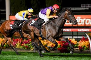 FILLY FLAGS OAKS INTENTION WITH STRONG GROUP WIN
