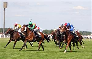 Star Witness storms to second at Royal Ascot
