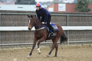 Purr-fect start for Purrealist progeny