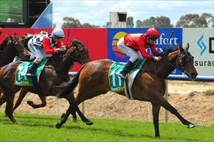Remember The Name victorious at Benalla