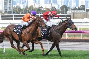 Stablemates in epic battle to Remember