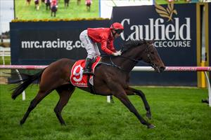 STAKES ASSIGNMENT AWAITS IN-FORM MARE