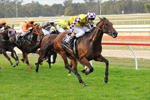 Mott solid as a rock at Seymour