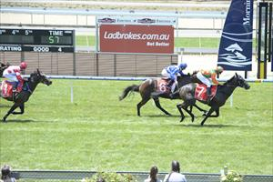 Sette Bello comes up trumps second time out