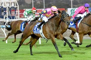 O'Reilly mare stays in form