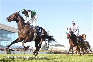Luckless Shamus not on Derby path