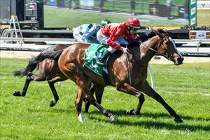 STAY GOLD WINS MAIDEN, SIBLING AIMS AT G1