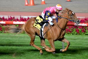 Moor produces gem aboard filly