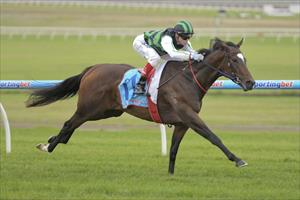 Tear Gas on trial for Queensland Oaks