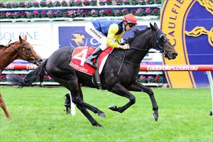 Swansong for stable favourite
