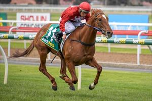 Classy filly breaks maiden at Geelong