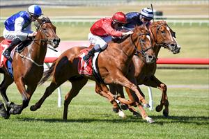 ALLEN SURGES ROSEMONT MARE TO VICTORY