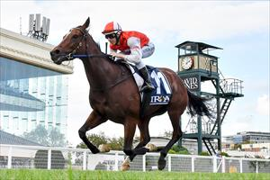 Magic Millions Trophy aim for Toffee Nose