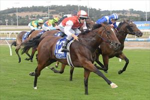 Toffee filly shows class in win