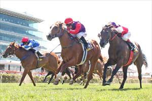 Punters support Running Tall