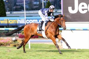Zahspeed bolts in with powerful display at the Valley