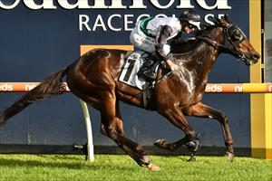 STABLE CHANGE FOR FINANCE TYCOON
