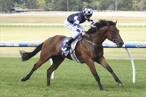 Shoemark backs up second treble with city double