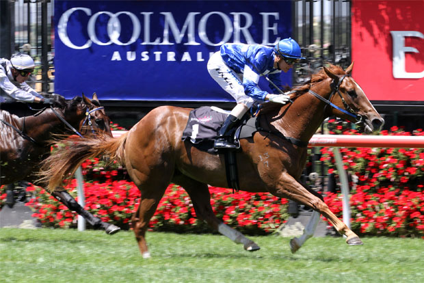 COOLMORE STAKES - STAR WITNESS